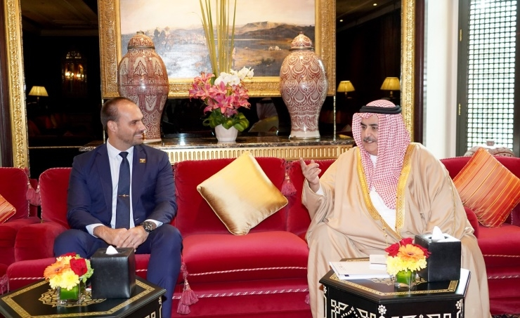 Foreign Minister meets Brazilian parliamentary committee chairman