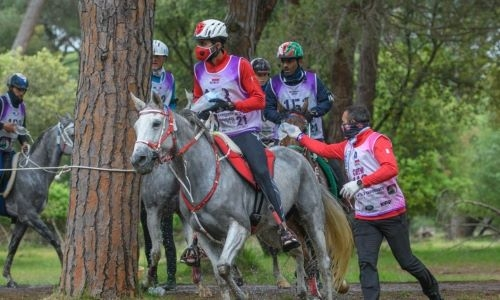 HH Shaikh Nasser bin Hamad praised royal care for equestrian sports