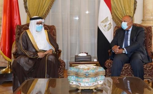 Focus on Libya, Palestinian cause