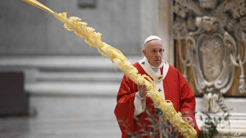 Pope livestreams Palm Sunday mass due to virus 'tragedy'
