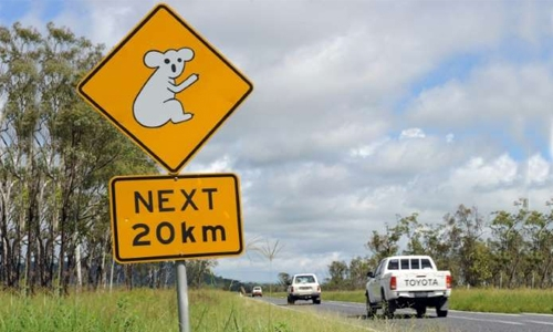 Aussie kids take stolen car on 1,000-kilometre road trip