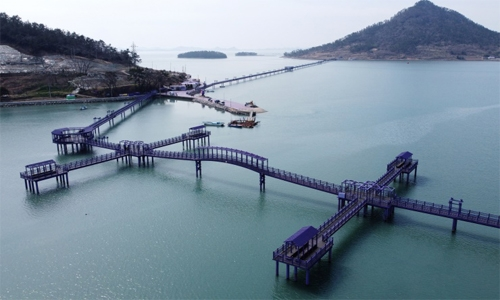 Drenched in purple, South Korean islands draw tourists