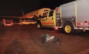 Saudi airport attacked