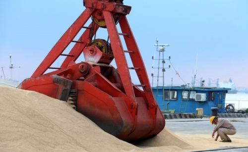 China's soybean imports from Brazil rise to record in June