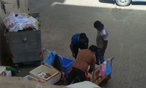 Expats handling fish in unhygienic conditions