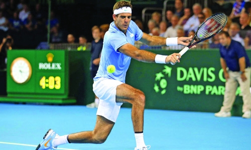 Del Potro too strong for Shapovalov