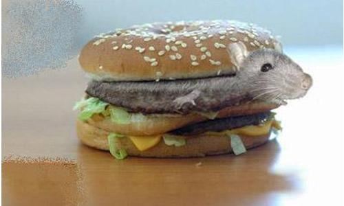 Mouse in burger: McDonald's for legal action