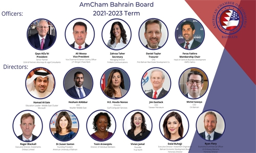 AmCham names new board
