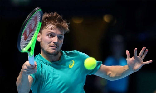 Goffin to face Federer