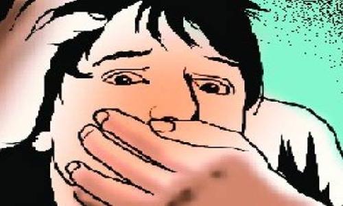 Driver jailed for rape bid foiled by karate girl