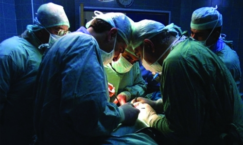 New advance could boost available organs for transplant