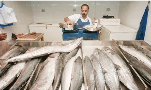 Two-month ban on fishing of kingfish