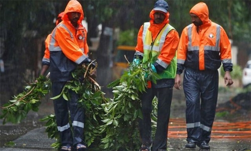 Cyclone Nivar tears down power lines, trees in India; no casualties