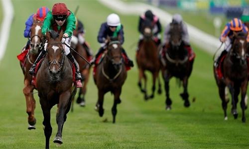 Bahrain to host international horserace