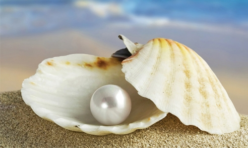 Pearl diving season begins in Bahrain