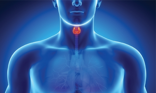 Common Thyroid Problems in Bahrain
