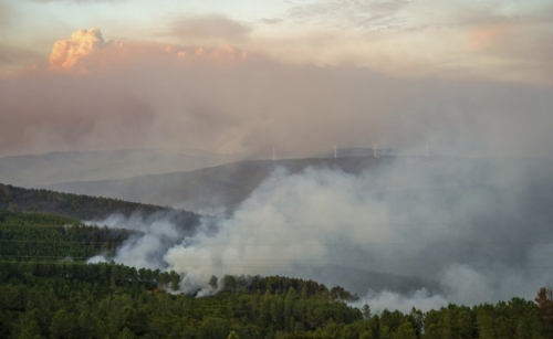 1,000 firefighters, 15 aircraft battle wildfire in Portugal