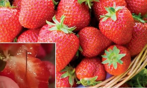 Woman arrested over strawberry needle scare in Oz