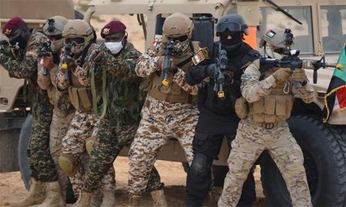 BDF unit participates in Arab Sword manoeuvres