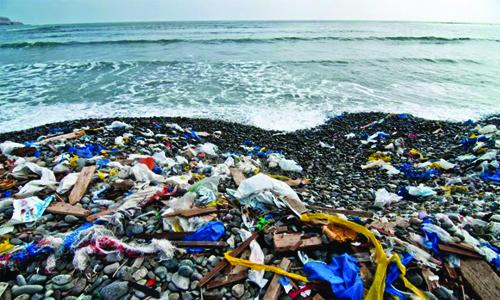 Beach clean-up drive to attract more people