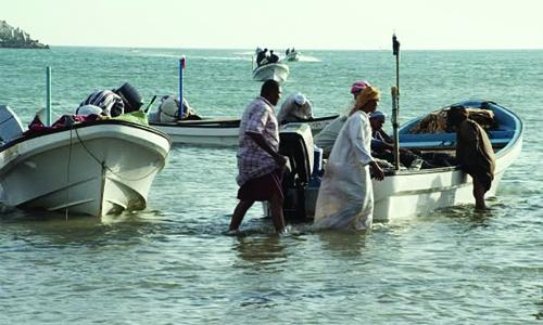 Fish flourishes in Omani waters