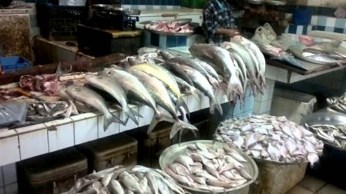 Fish prices increase as temperatures soar, less fishing and declining fisheries termed reasons