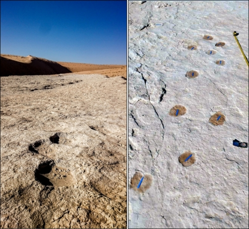 First evidence of human life on the Arabian Peninsula uncovered by archaeologists in Saudi Arabia