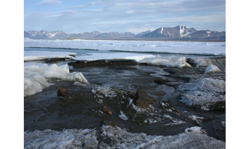 Danish researchers find what is likely world's northernmost island