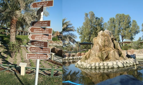 Six companies in the fray for supervising Al Areen Wildlife Park