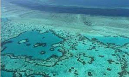 Australia to challenge UNESCO downgrade of Great Barrier Reef