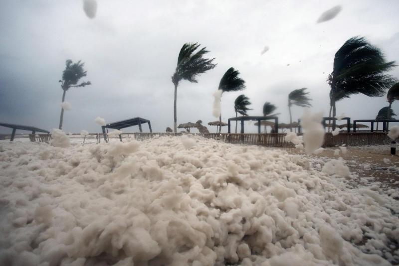 Cyclone dies, horror still lives on..