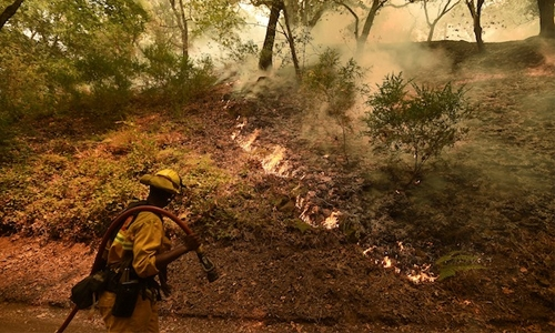 Five firefighters battle California wildfires, bulldozer operator dies