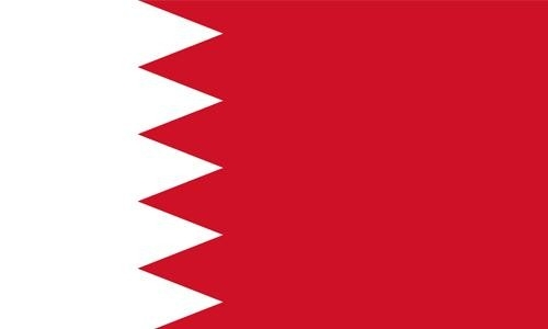Bahrain's human rights protection efforts lauded