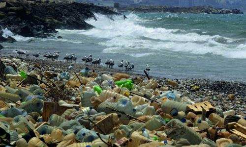 Coca-Cola, Walmart to cut plastic pollution in oceans