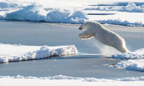 Arctic sea ice thinning faster than expected, new study shows