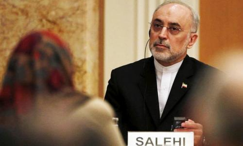 Iran nuclear chief says uranium stockpile reaches 950 tons